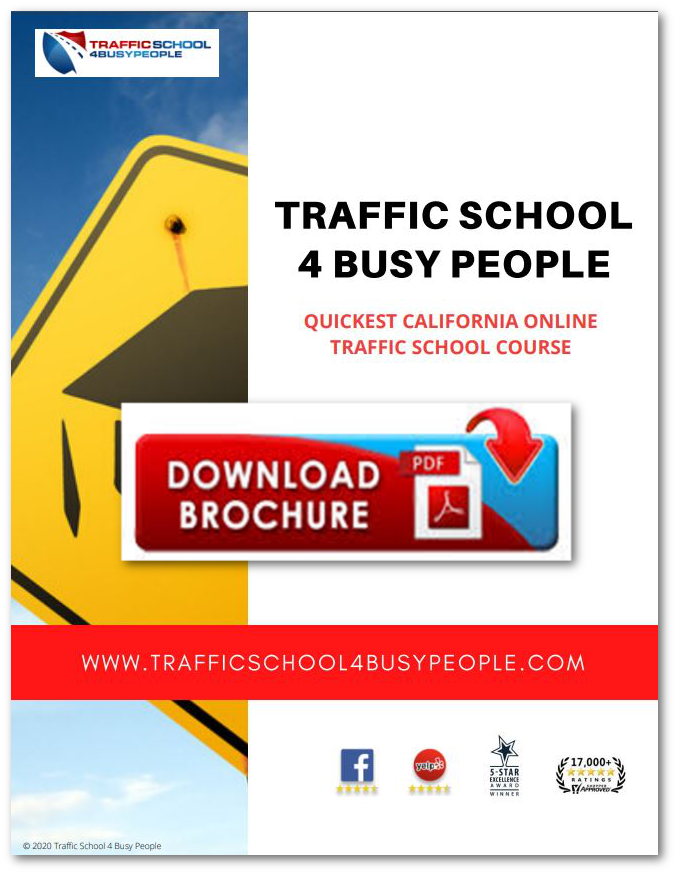 Traffic School 4 Busy People Brochure