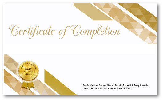 Your Completion Certificate
